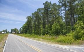 Wilson County 01