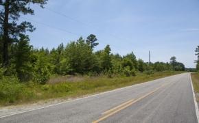 Wilson County 03