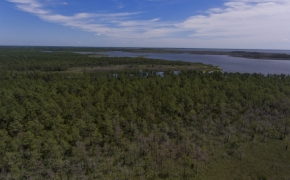 887 Acres Spencers Bay 5