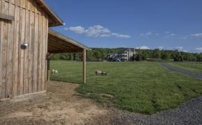 Barn-House View
