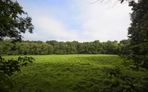 Arther Teague Field 2