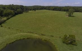 Arthur Teague Field 12