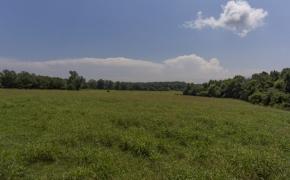Arthur Teague Field 16