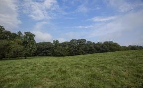 Arthur Teague Field 3