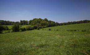 Arthur Teague Field 4
