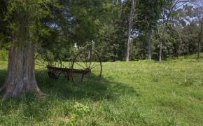 Arthur Teague Field 7