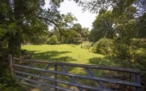Arthur Teague Field 8