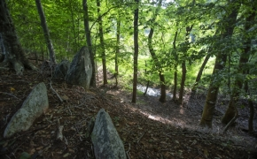 Arthur Teague Outcroppings