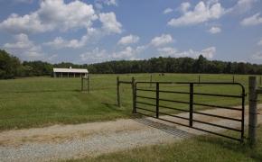 Ben Wilson Barn View