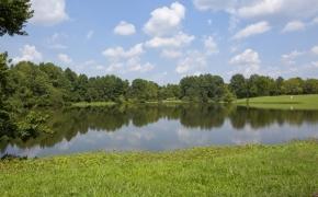 Ben Wilson Lake 2