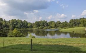 Ben Wilson Lake View 3