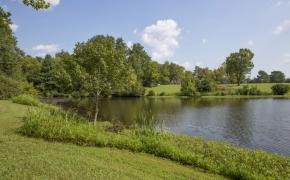 Ben Wilson Lake View
