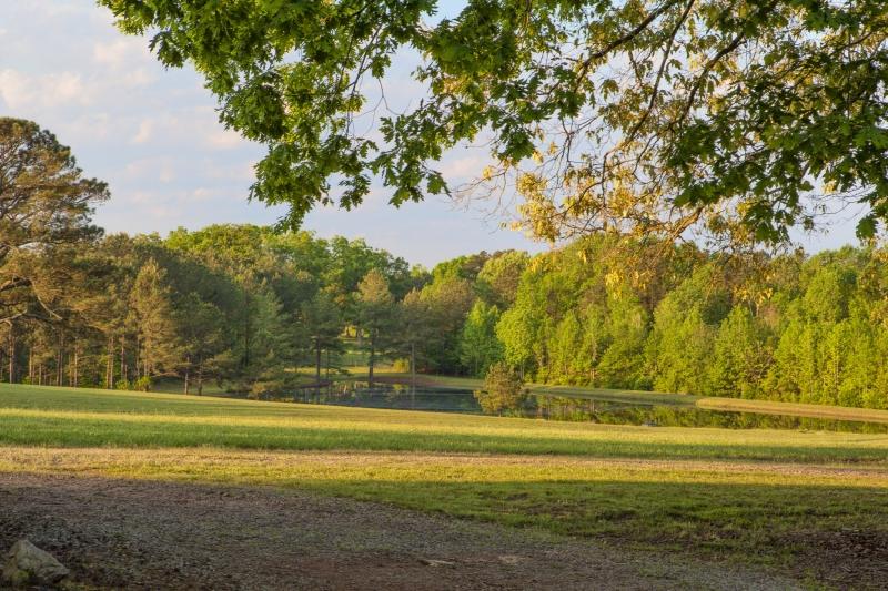 Benton Grove Preserve 215 Acres In Franklin County For Sale