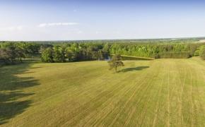 Benton Grove Farms.jpg