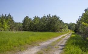 Roads 6.jpg