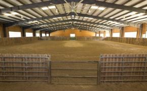 Equestrian Arena 1