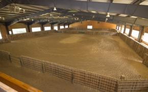Equestrian Arena 2