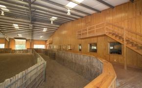 Equestrian Arena 3