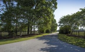 Equestrian Entryway