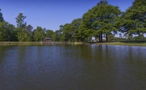 Equestrian Lake 2