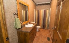 Equestrian Master Bedroom Bath