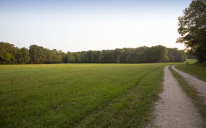 Cedar-Creek-Road-21