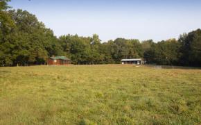 Cedar-Creek-Road-26