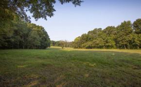 Cedar-Creek-Road-Fields-3