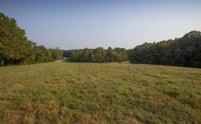Cedar-Creek-Road-Fields-4