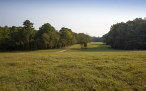 Cedar-Creek-Road-Fields-5