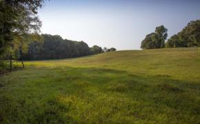 Cedar-Creek-Road-Fields-6