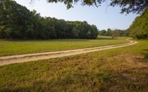 Cedar-Creek-Road-Fields-7