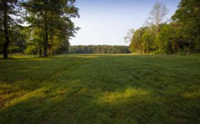 Cedar-Creek-Road-Fields-8