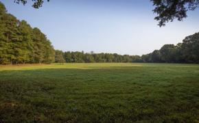 Cedar-Creek-Road-Fields