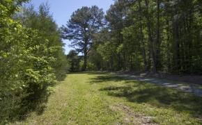 Greensboro Road Entryway 2