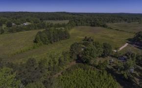 Greensboro Road Fields 1