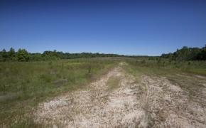 Greensboro Road Fields 13