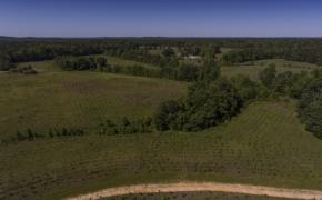 Greensboro Road Fields 5