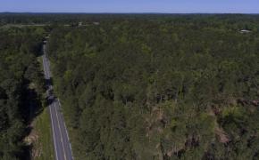 Greensboro Road Timber 2