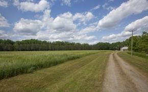Daybreak-Farms-Home-5