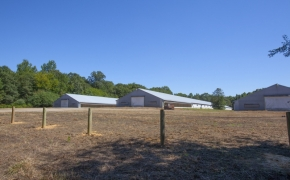 Deep River chicken houses