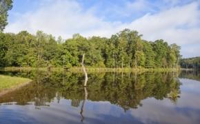 Deep River lake 3