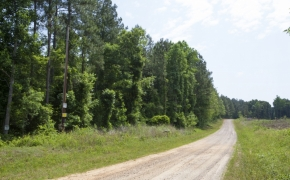 Earnest Turner Road 2