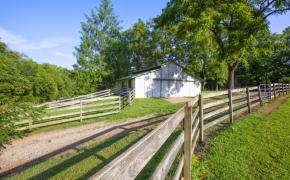 Black Horse Run Farm 3