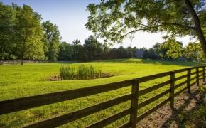 Black Horse Run Farm 5