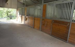 Fox Spring Farm Barn inside