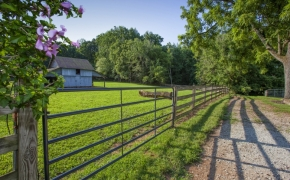 Black Horse Run Farm