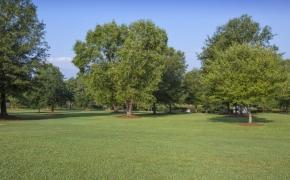 Gabriel Farm Landscaping 4