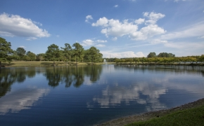 Gabriel Farm Pond 1