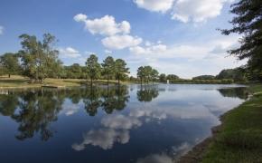 Gabriel Farm Pond 2